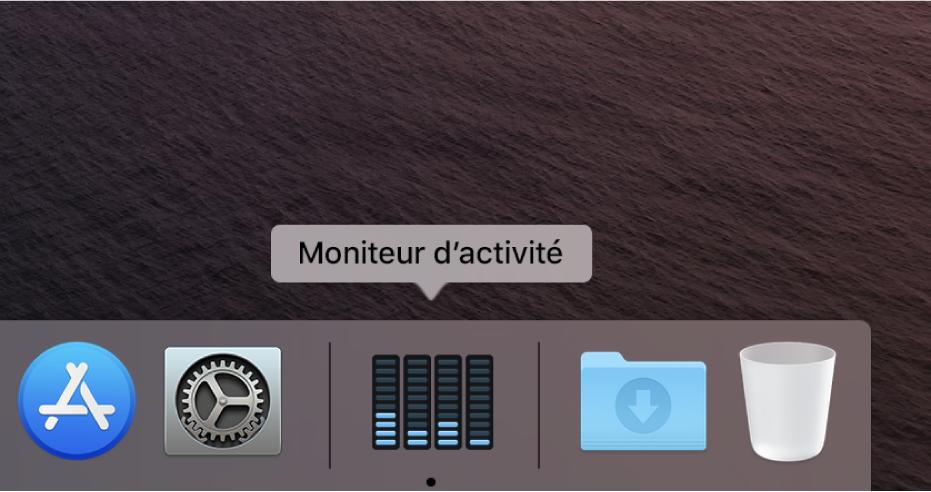 L'icône Moniteur d'activité dans le Dock affichant l'activité du disque.