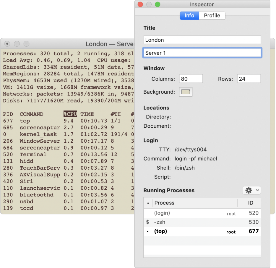 The Inspector pane in Terminal.