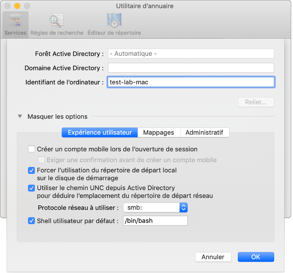 Zone de dialogue de configuration ActiveDirectory avec la section relative aux options développée.