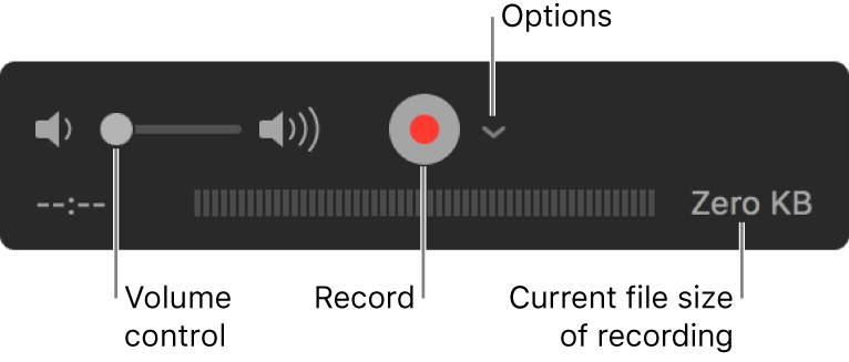 The recording controls, including the volume control, the Record button and the Options pop-up menu.