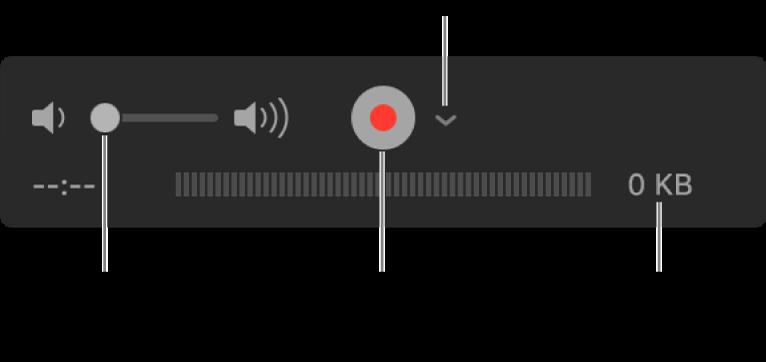 Los controles de grabación, incluido el control del volumen, el botón Grabar y el menú desplegable Opciones.