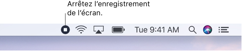 La barre des menus affichant le bouton «Arrêter l'enregistrement».