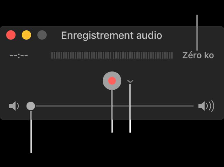 La fenêtre d'enregistrement audio avec le bouton Enregistrer et le menu local Options au centre de la fenêtre, et le contrôle du volume en bas.
