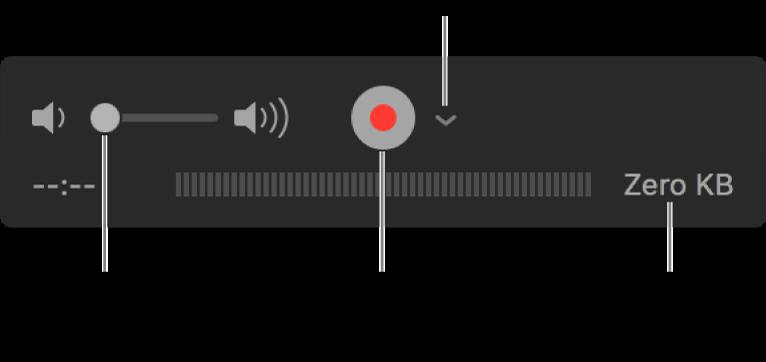 Controlli di registrazione che includono il controllo del volume, il pulsante Registra e il menu a comparsa Opzioni.