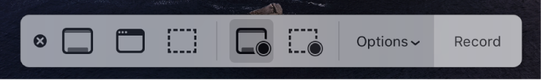 Gli strumenti di Istantanea schermo con il pulsante Registra a destra accanto al menu a comparsa Opzioni.