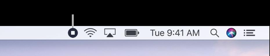 De menubalk met de knop 'Stop opname'.
