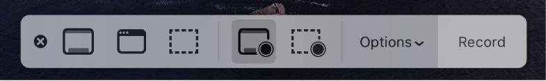 Skärminspelningsverktyg med inspelningsknappen till höger och popupmenyn Alternativ bredvid.