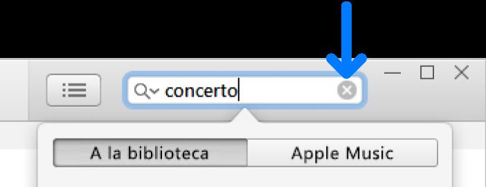 El camp de cerca amb text introduït; el botó Eliminar es troba a la dreta del camp