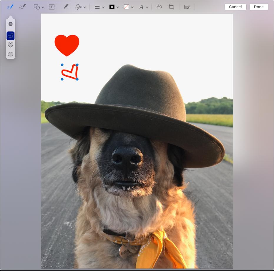 마크업 도구를 사용하여 하트가 그려진 이미지.
