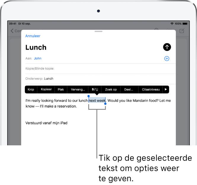 Voorbeeld van een e-mailbericht waarin een stukje tekst is geselecteerd. Boven de geselecteerde tekst zie je knoppen voor knippen, kopiëren, plakken en vervangen. De geselecteerde tekst is gemarkeerd.