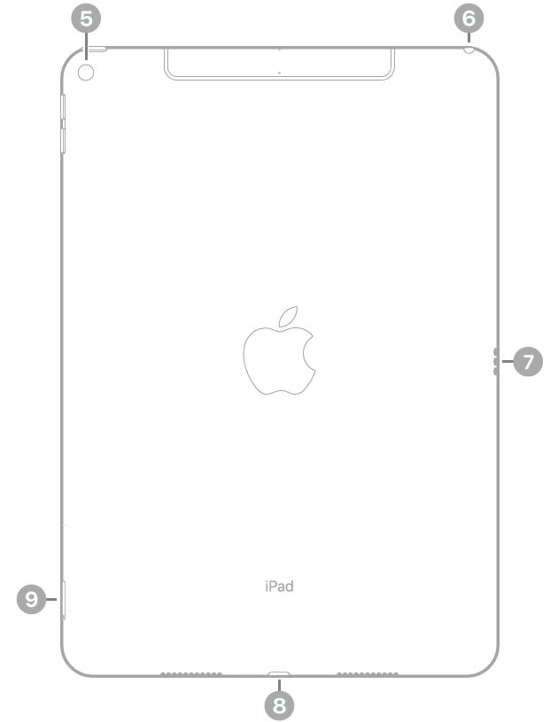 Achterkant van de iPad met bijschriften, van linksboven met de klok mee: camera aan de achterkant, koptelefoonaansluiting, Smart Connector, Lightning-connector en simkaarthouder (Wi-Fi+Cellular).