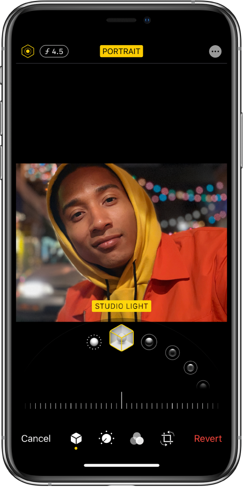 The Edit screen of a Portrait mode photo. At the top left of the screen are the Lighting Intensity button and the Depth Adjustment button. At the top center of the screen the Portrait button is on and at the top right is the Plug-ins button. The photo is in the center of the screen and below the photo is a slider to choose the Portrait Light Effect and below that a slider to adjust the value. At the bottom of the screen from left to right are the Cancel, Portrait, Adjust, Filters, Crop, and Revert buttons.