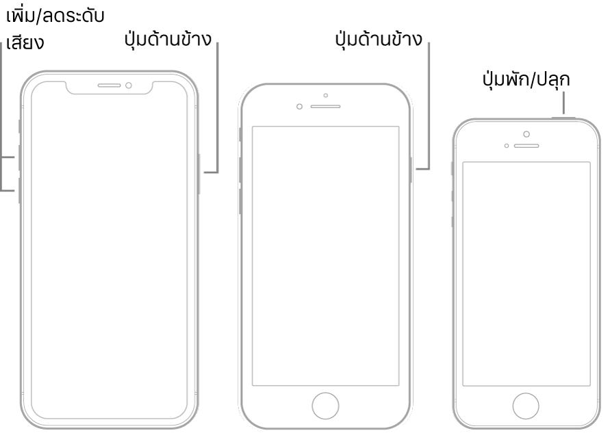 ภาพประกอบของ iPhone รุ่นต่างๆ สามประเภท ซึ่งทั้งหมดหงายหน้าจอขึ้น ภาพประกอบซ้ายสุดแสดงปุ่มเพิ่มระดับเสียงและปุ่มลดระดับเสียง ซึ่งอยู่ด้านซ้ายของอุปกรณ์ ปุ่มด้านข้างแสดงอยู่ทางด้านขวา ภาพประกอบตรงกลางแสดงปุ่มด้านข้าง ซึ่งอยู่ด้านขวาของอุปกรณ์ ภาพประกอบขวาสุดแสดงปุ่มพัก/ปลุก ซึ่งอยู่ด้านบนสุดของอุปกรณ์