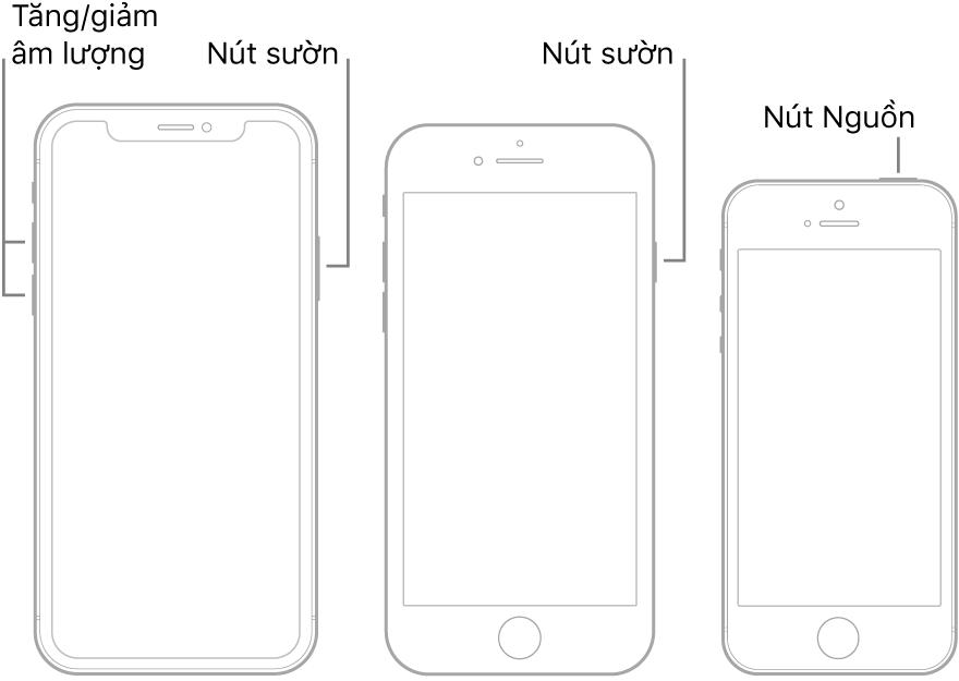 Các hình minh họa của ba loại kiểu máy iPhone, tất cả các kiểu máy đó đều có màn hình hướng lên trên. Hình minh họa ở ngoài cùng bên trái hiển thị các nút tăng và giảm âm lượng ở cạnh bên trái của thiết bị. Nút sườn được hiển thị ở bên phải. Hình minh họa ở giữa hiển thị nút sườn nằm ở bên phải của thiết bị. Hình minh họa ở ngoài cùng bên phải hiển thị nút Nguồn ở đầu thiết bị.