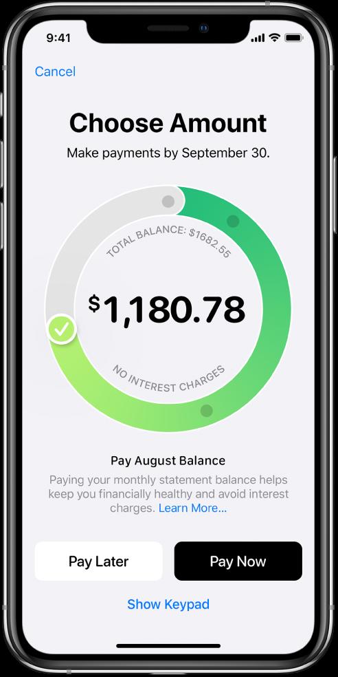 还款屏幕,显示可拖移调整还款金额的勾号。在底部,您可以选取以后某天还款或立即还款。