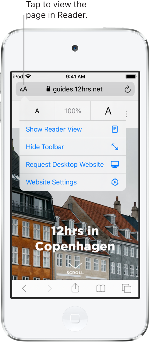 The address field in Safari, with the Reader button on the left.