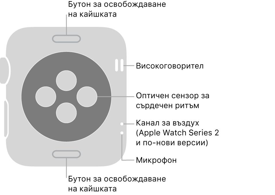 Задната част на Apple Watch Series 3 и по-ранни версии с надписи, сочещи към бутон за освобождаване на каишката, високоговорител, оптичен сърдечен сензор, вентилационен отвор и микрофон.