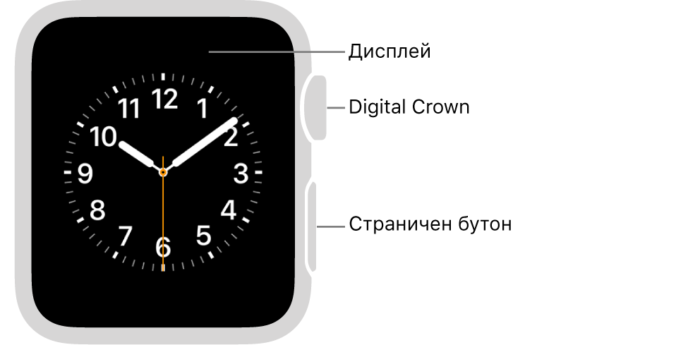 Предната част на Apple Watch Series 3 и по-ранни версии с надписи, сочещи към дисплей, коронка Digital Crown и страничен бутон.