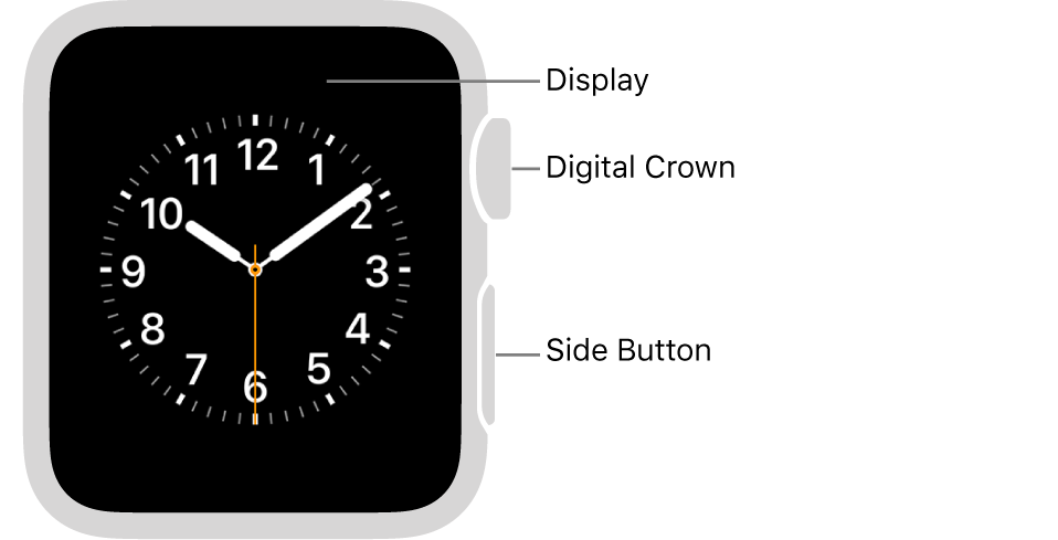 The front of Apple Watch Series 3 and earlier with callouts pointing to display, Digital Crown, and side button.
