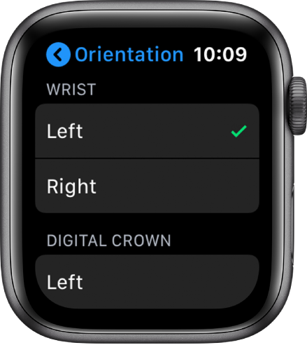 The Orientation screen on Apple Watch. You can set your wrist and Digital Crown preference.
