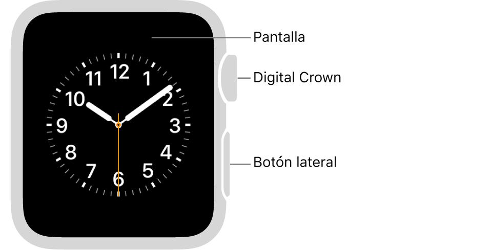 Parte frontal del AppleWatch Series3 y anterior, con textos que indican la pantalla, la corona DigitalCrown y el botón lateral.