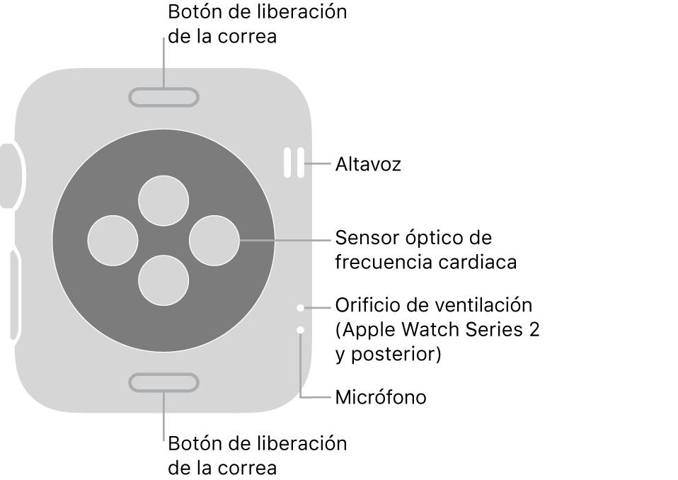 Parte trasera del AppleWatch Series3 y anterior, con textos que indican el botón de liberación de la correa, el altavoz, el sensor óptico de frecuencia cardiaca, los orificios de ventilación y el micrófono.