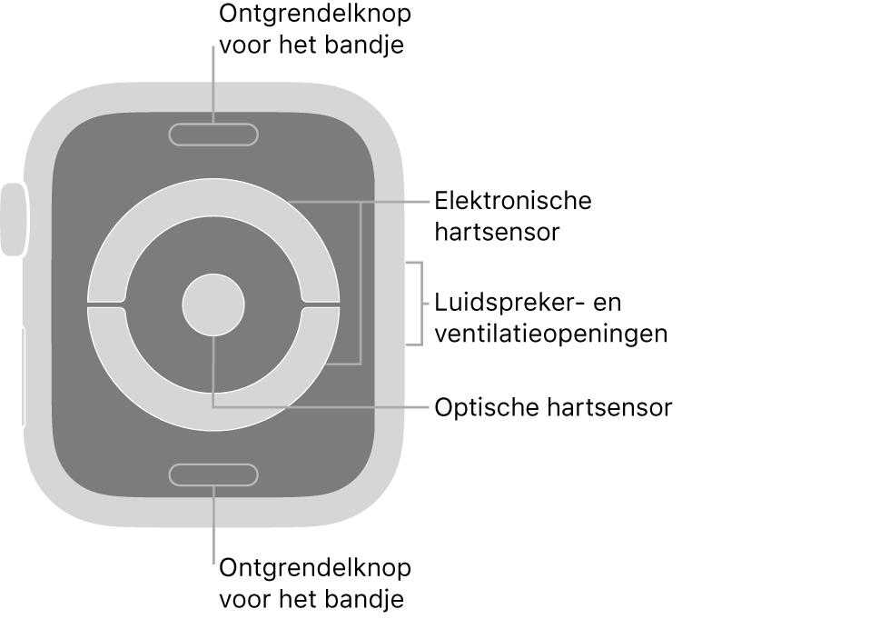 De achterkant van de AppleWatch Series4 met bijschriften bij de ontgrendelknop voor het bandje, de elektronische hartsensor, de luidspreker- en ventilatieopeningen en de optische hartsensor.