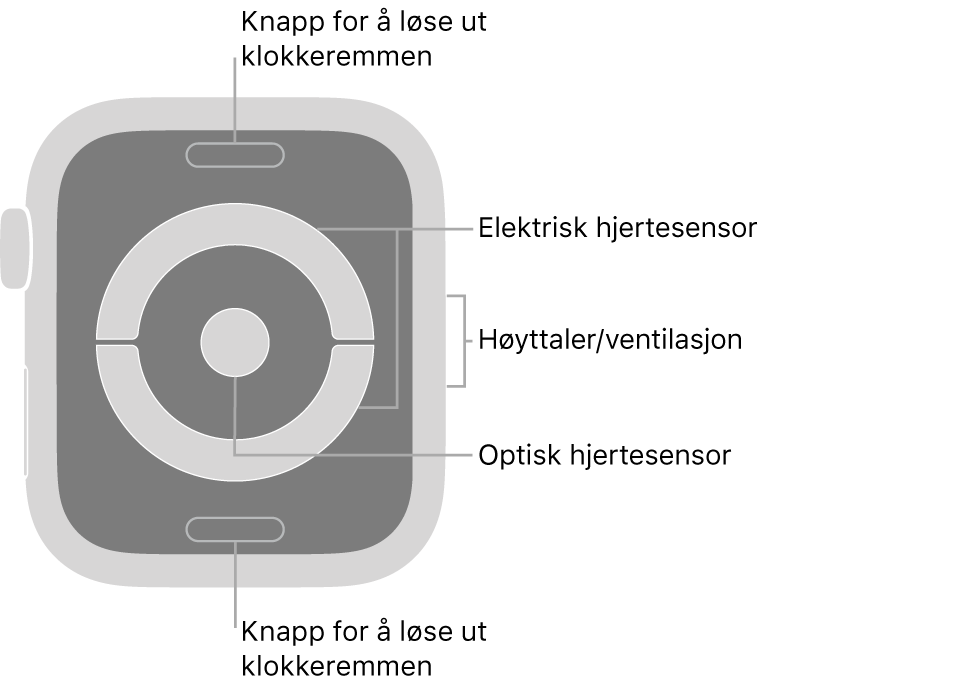 Baksiden av Apple Watch Series 4 med bildeforklaringer til remutløserknappene, den elektriske pulssensoren, høyttaleren/luftventilene og den optiske pulssensoren.