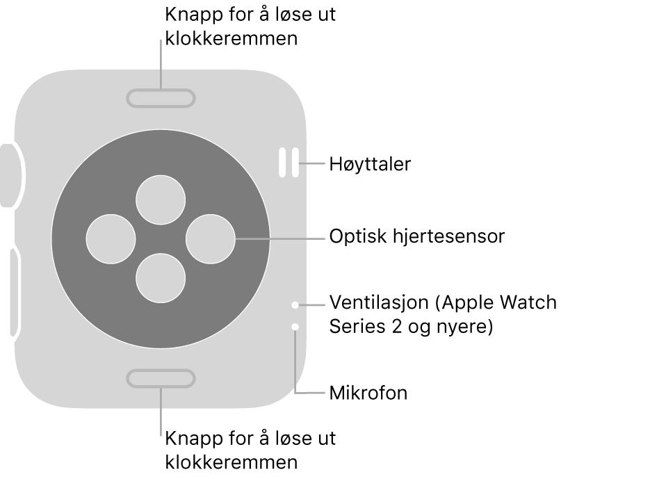 Baksiden av Apple Watch Series 3 og eldre med bildeforklaringer til remutløserknappene, høyttaleren, den optiske pulssensoren, luftventilen og mikrofonen.