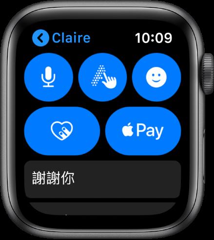 「訊息」畫面,顯示位於右下角的 Apple Pay 按鈕。
