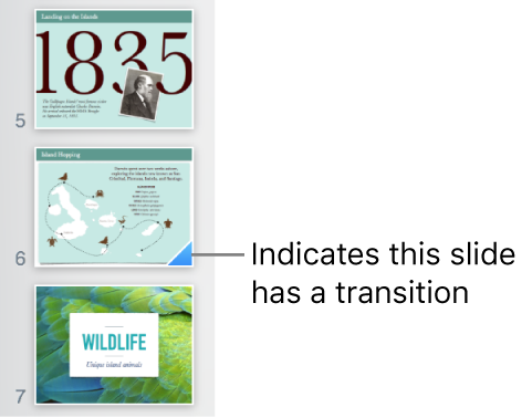 A blue triangle on a slide indicates the slide has a transition.