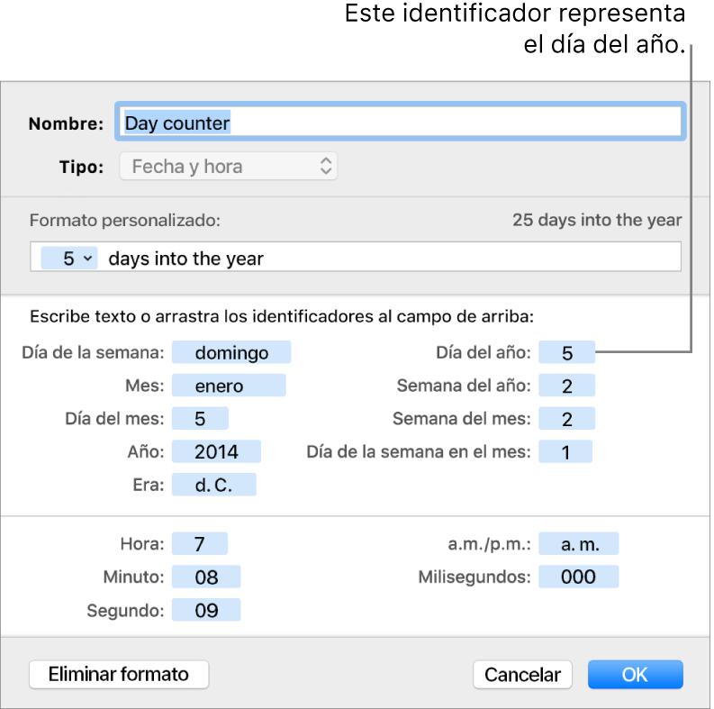 Ventana de formato de celda personalizado con controles para crear un formato de fecha y hora personalizado.