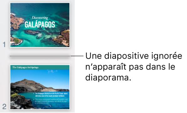 Navigateur de diapositives avec une diapositive ignorée s'affichant sous forme de ligne horizontale.