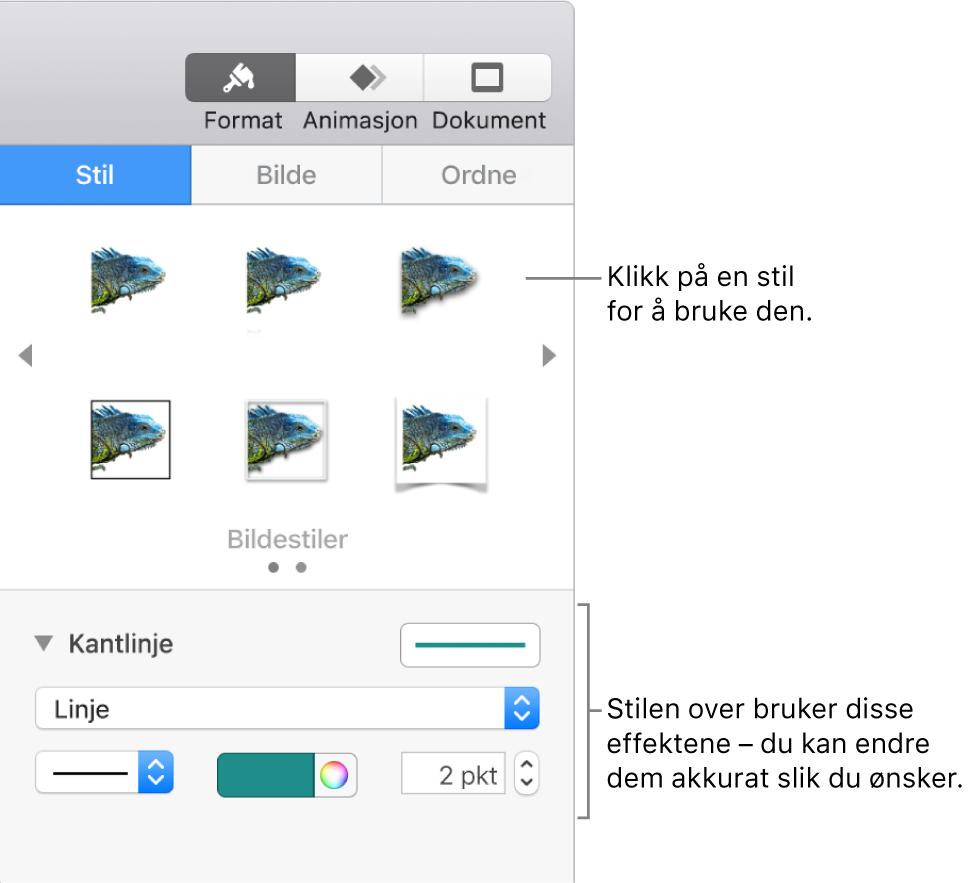 Stil-fanen i Format-sidepanelet som viser valg for objektstiler.