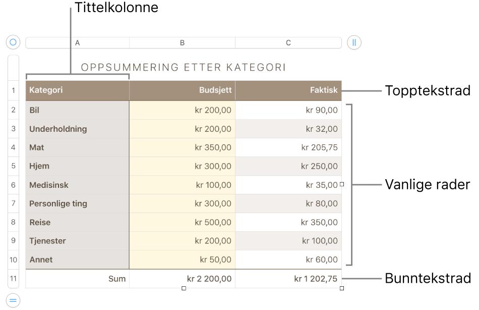 En tabell som viser tittelrader og -kolonner, vanlige rader og kolonner, bunnrader og -kolonner og håndtak for å legge til eller slette rader eller kolonner.
