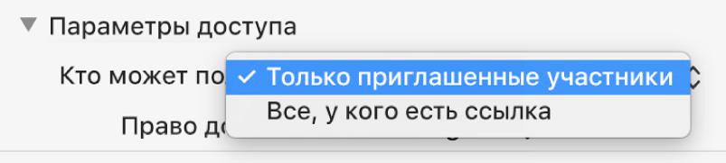 Раздел «Параметры доступа» в диалоговом окне совместной работы с открытым всплывающим меню «Кто может получить доступ», в котором выбран вариант «Только приглашенные участники».