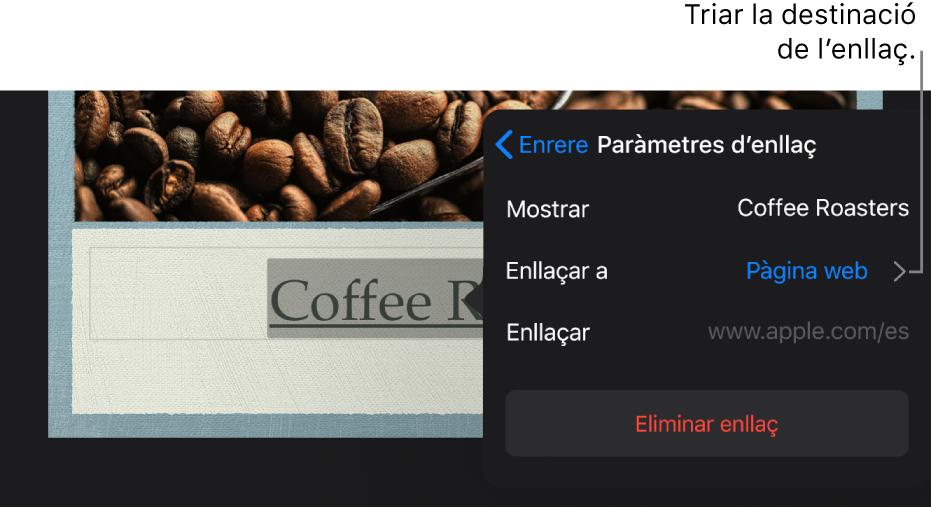 """La finestra emergent """"Paràmetres d'enllaç"""" amb els camps Mostrar, """"Enllaçar a"""" (amb l'opció """"Pàgina web"""" seleccionada) i Enllaç. El botó """"Eliminar enllaç"""" a la part inferior."""