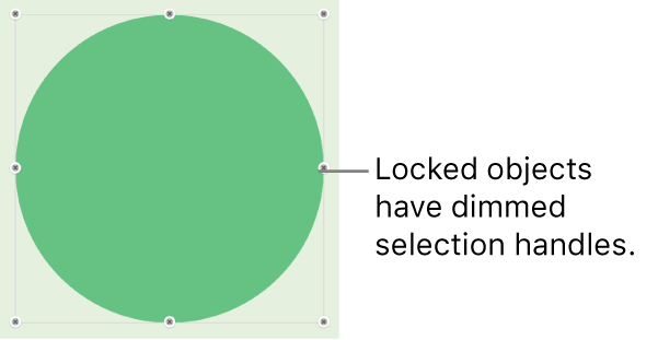 A locked object with dimmed selection handles.