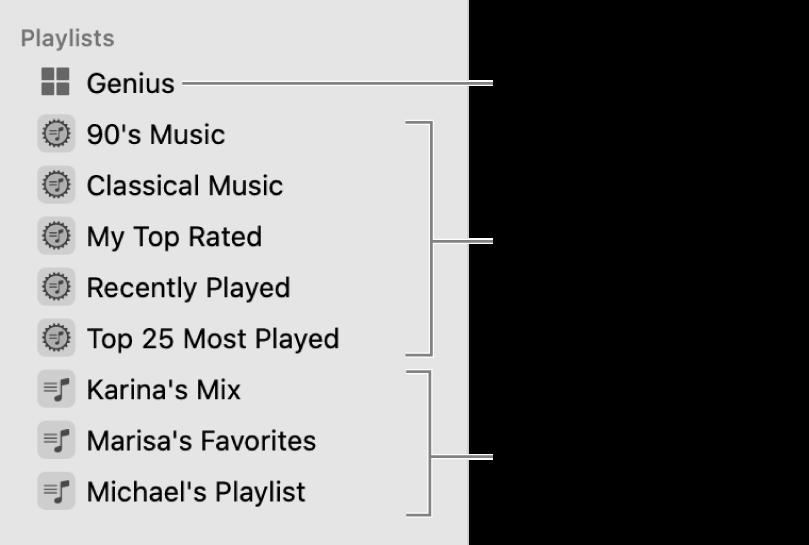 In de navigatiekolom van Muziek zie je de diverse typen afspeellijsten: Genius-, slimme en standaardafspeellijsten.