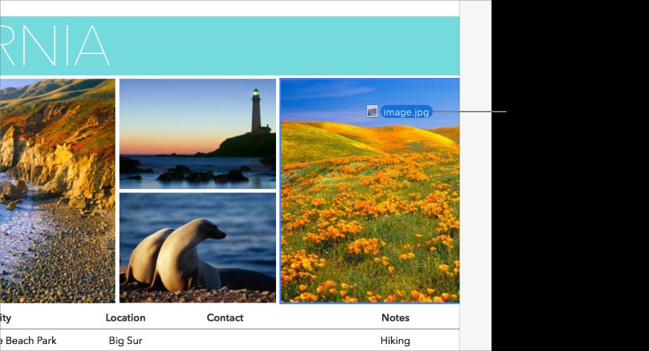 Un nouveau fichier d'image que l'on fait glisser vers une image fictive.