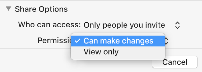 "The Share Options section of the collaboration dialogue with the Permission pop-up menu open and ""Can make changes"" selected."