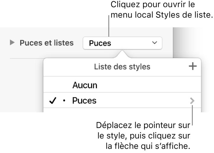 Le menu local Liste des styles avec un style sélectionné et une flèche à sa droite.