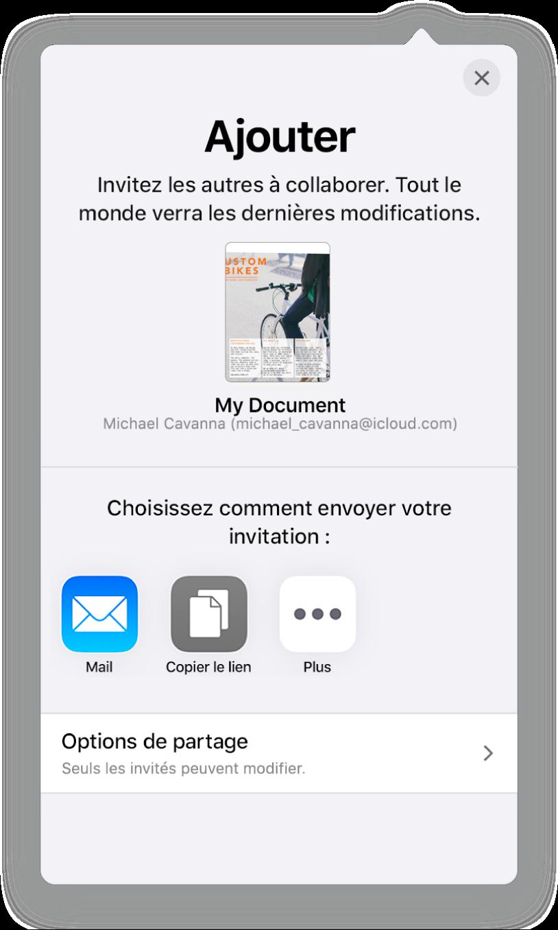 L'écran «Ajouter des personnes» avec l'image de la feuille de calcul à partager. On trouve en dessous les différents boutons pour envoyer l'invitation, y compris Mail, Copier le lien et Plus. Le bouton Options de partage se trouve en bas.