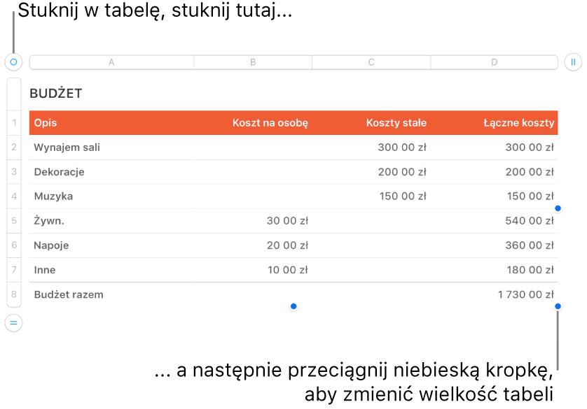 Zaznaczona tabela zniebieskimi kropkami pozwalającymi na zmienianie jej wielkości.