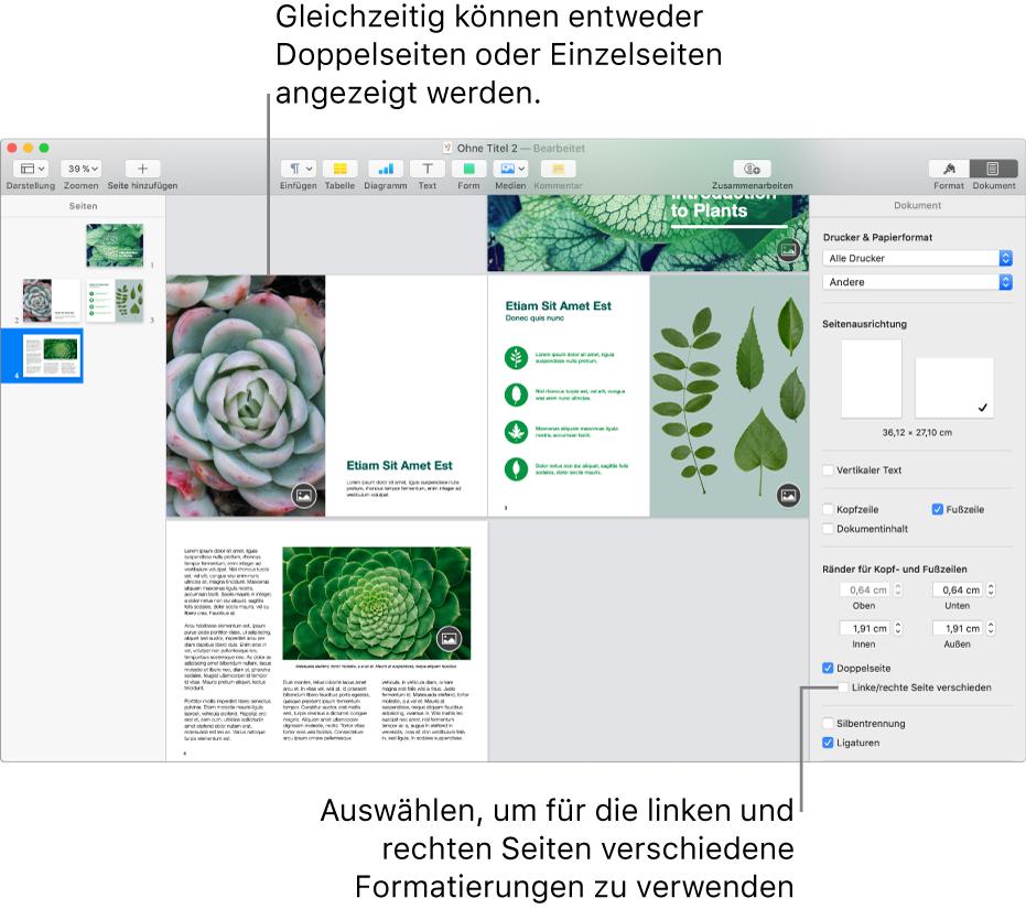 """Das Pages-Fenster mit Seitenminiaturen und Dokumentseiten, die als Doppelseiten angeordnet sind. In der Seitenleiste """"Dokument"""" rechts ist das Feld """"Linke u. rechte Seiten unterschiedlich"""" nicht markiert."""