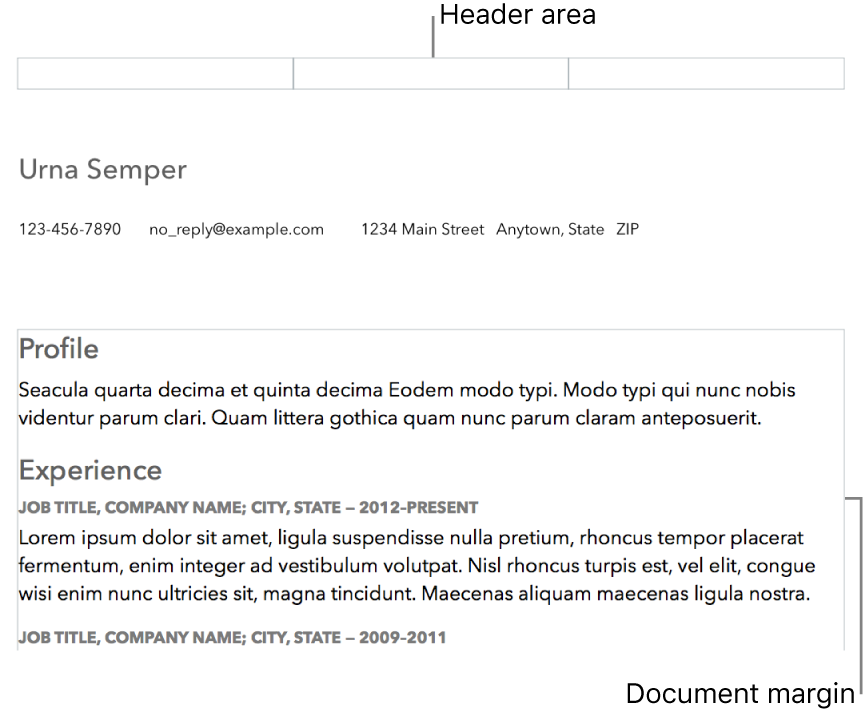 Layout view showing header area and document margins.