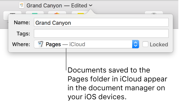 The Save dialogue for a document with Pages — iCloud in the Where pop-up menu.