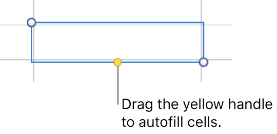 A selected cell with a yellow handle you can drag to autofill cells.