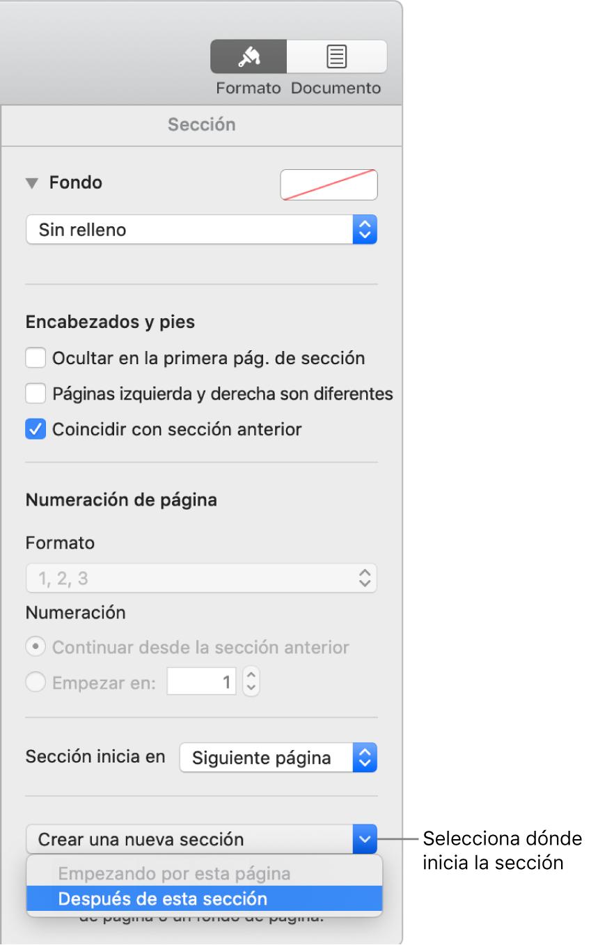 La pestaña Sección con los controles para los encabezados, pies de página, números de página y dónde comenzar la nueva sección.