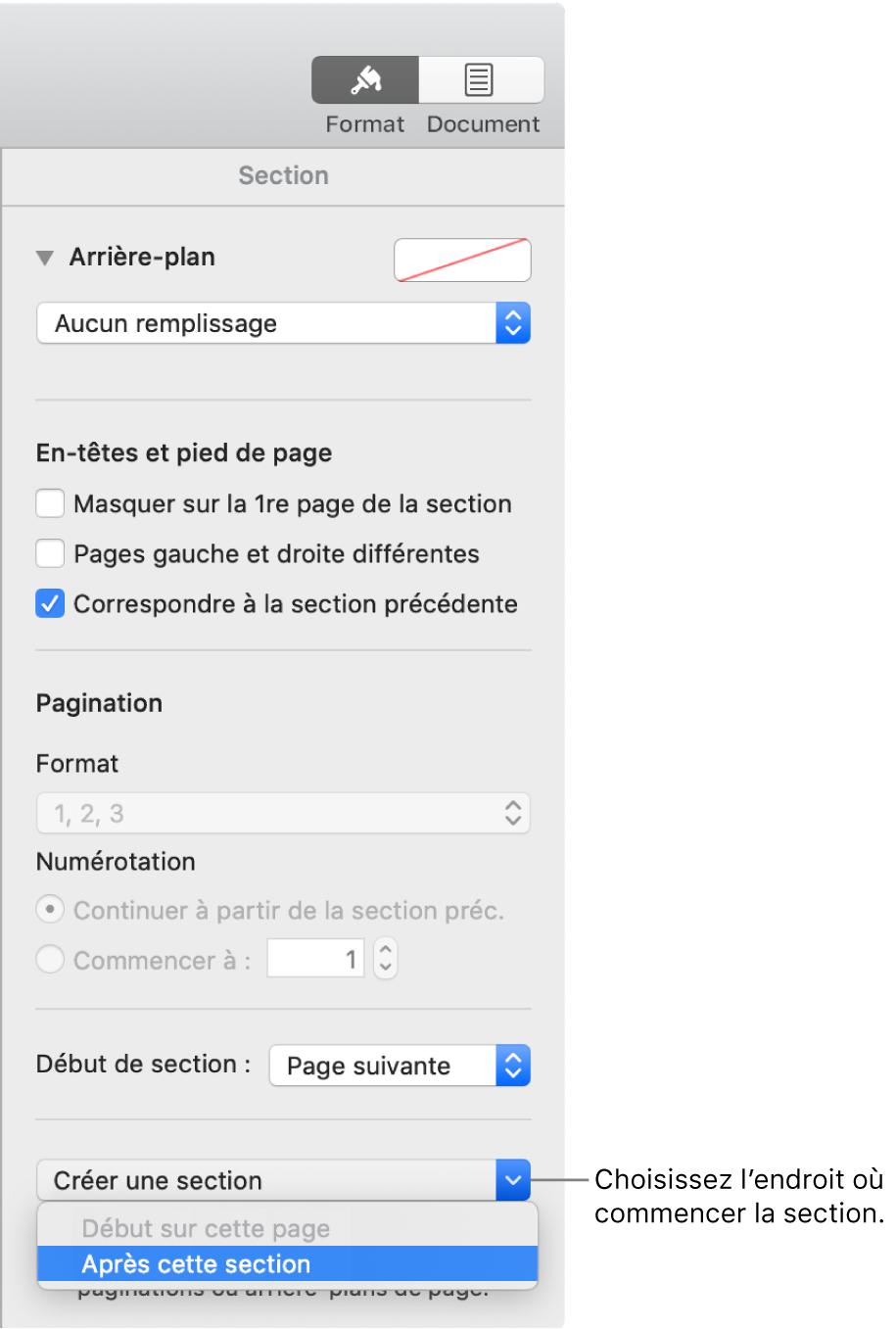 L'onglet Section avec les commandes pour les en-têtes, les pieds de page, les numéros de page et le point de départ de la nouvelle section.